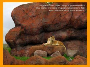 Логовом для них служит пещера, расщелина или яма, расположенная втруднодосту