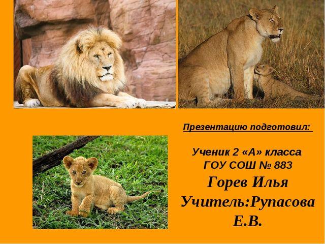 Презентацию подготовил: Ученик 2 «А» класса ГОУ СОШ № 883 Горев Илья Учитель:...