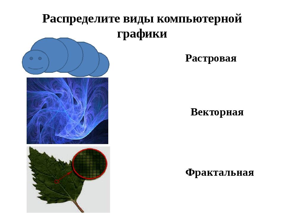 Распределите виды компьютерной графики Растровая Векторная Фрактальная