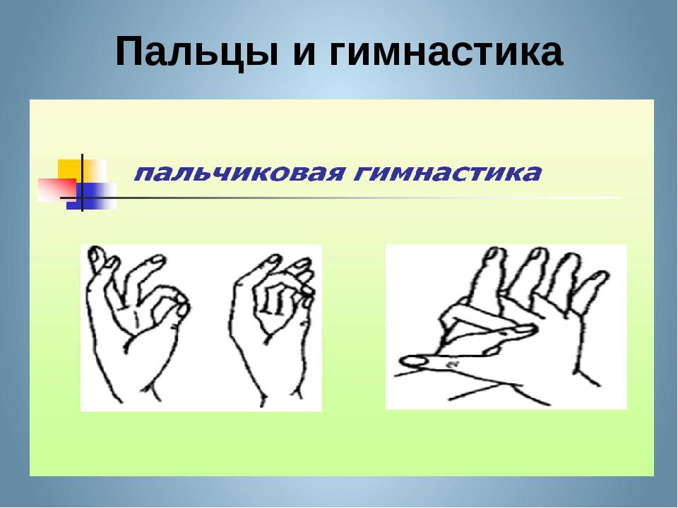 Пальцы и гимнастика