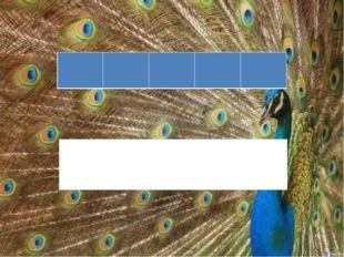 На табло зашифрована лесная птица, которая выводит зимой птенцов