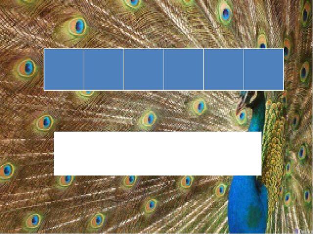 На табло зашифрована лесная птица с коричневой грудкой, с белыми полосками на...