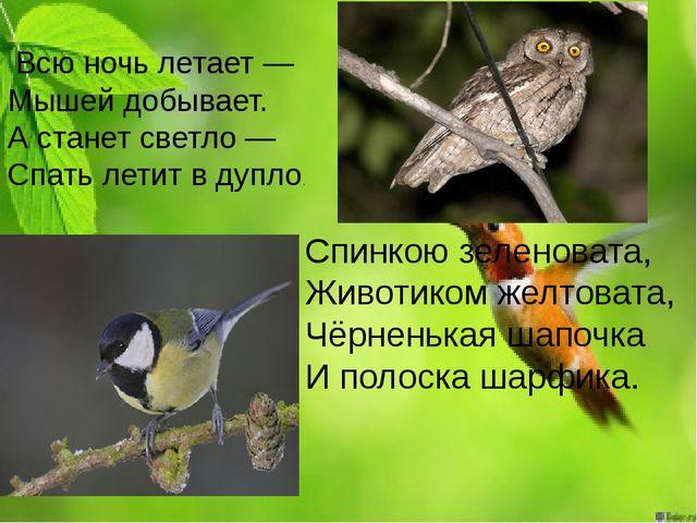 Всю ночь летает — Мышей добывает. А станет светло — Спать летит в дупло....