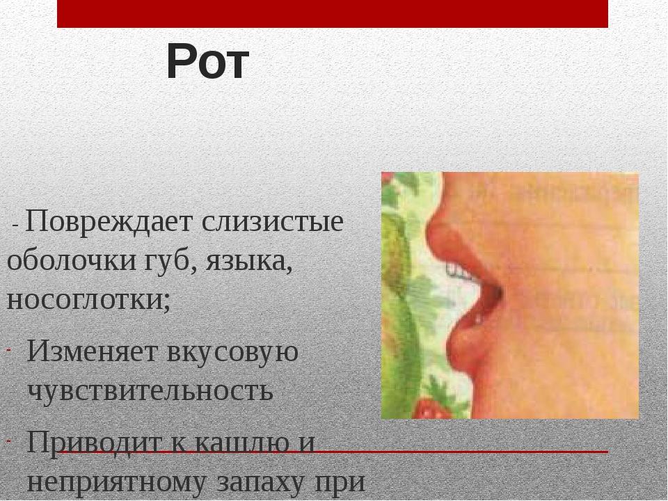 - Повреждает слизистые оболочки губ, языка, носоглотки; Изменяет вкусовую чу...