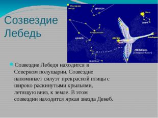 Созвездие Лебедь СозвездиеЛебедянаходитсяв Северномполушарии.Созвездие н