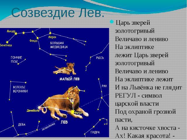 Созвездие Лев. Царь зверей золотогривый Величаво и лениво На эклиптике лежи...
