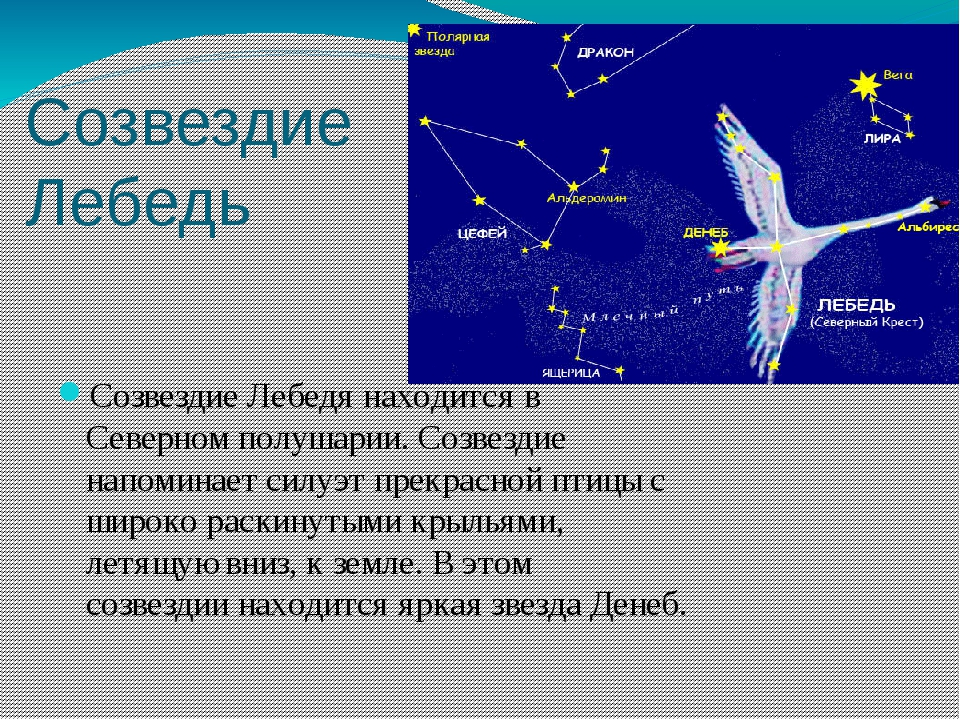 Созвездие Лебедь СозвездиеЛебедянаходитсяв Северномполушарии.Созвездие н...