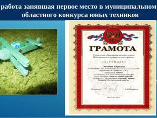 Моя работа занявшая первое место в муниципальном этапе областного конкурса юн