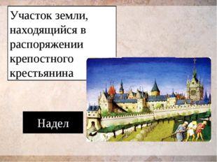 Участок земли, находящийся в распоряжении крепостного крестьянина Надел