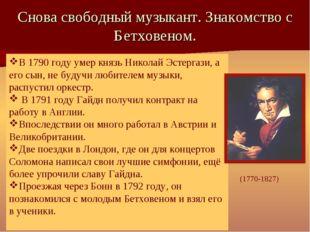 Снова свободный музыкант. Знакомство с Бетховеном. В 1790 году умер князь Ник