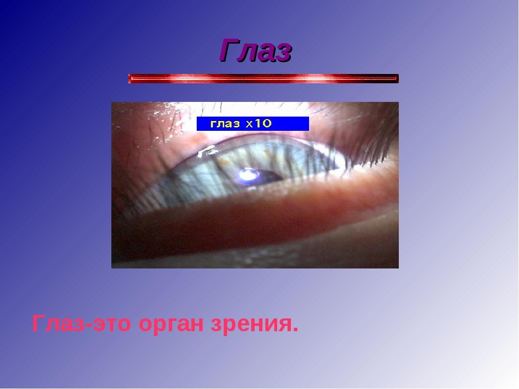 Глаз Глаз-это орган зрения.