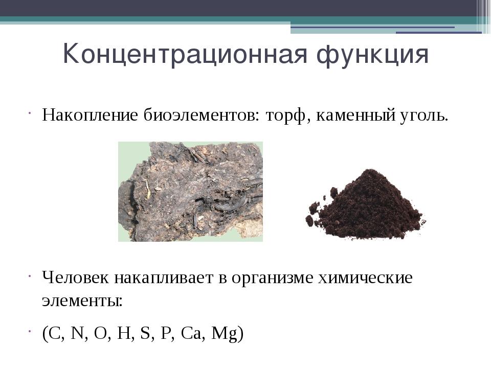 Концентрационная функция Накопление биоэлементов: торф, каменный уголь. Челов...