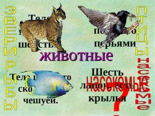 животные Тело покрыто шерстью Тело покрыто перьями Тело покрыто скользкой чеш