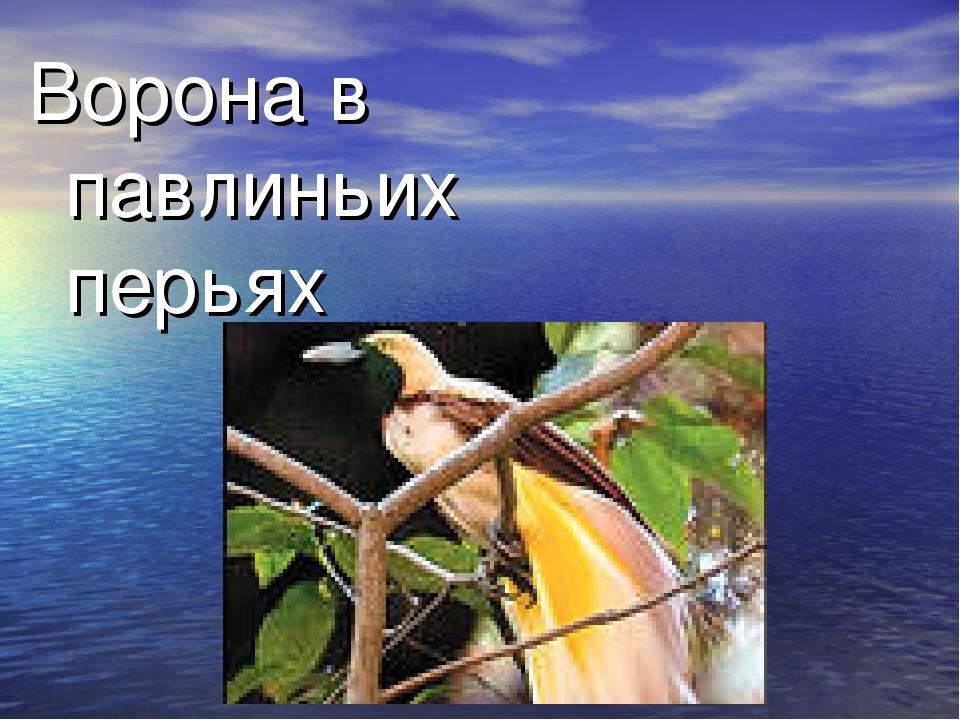 Ворона в павлиньих перьях Человек, безуспешно старающийся казаться лучше, чем...