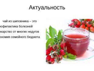 Актуальность чай из шиповника – это профилактика болезней лекарство от многих