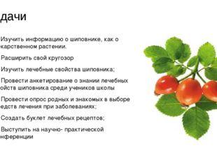 задачи 1. Изучить информацию о шиповнике, как о лекарственном растении. 2. Р