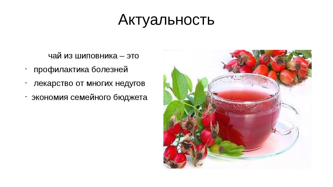 Актуальность чай из шиповника – это профилактика болезней лекарство от многих...