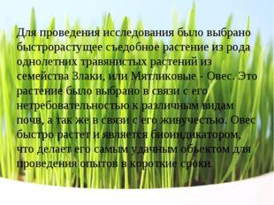 Для проведения исследования было выбрано быстрорастущее съедобное растение из