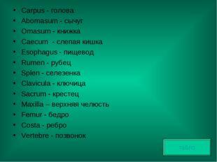 Carpus - голова Abomasum - сычуг Omasum - книжка Caecum - слепая кишка Esopha