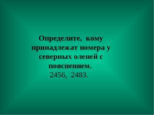 Определите, кому принадлежат номера у северных оленей с пояснением. 2456, 24