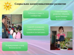 Ребенок в семье и сообществе. Социально-коммуникативное развитие Социализация