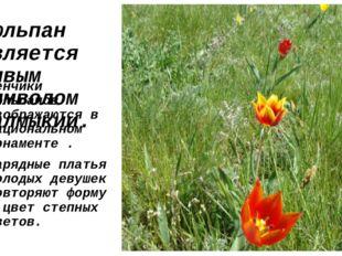 Тюльпан является живым символом Калмыкии. Венчики тюльпанов изображаются в на