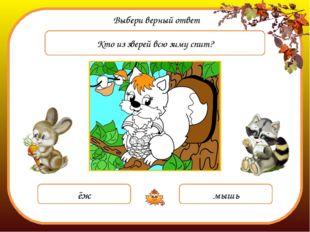 Выбери верный ответ Кто из зверей всю зиму спит? ёж мышь