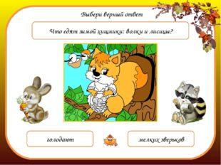 Выбери верный ответ Что едят зимой хищники: волки и лисицы? голодают мелких з