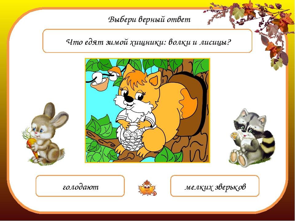 Выбери верный ответ Что едят зимой хищники: волки и лисицы? голодают мелких з...