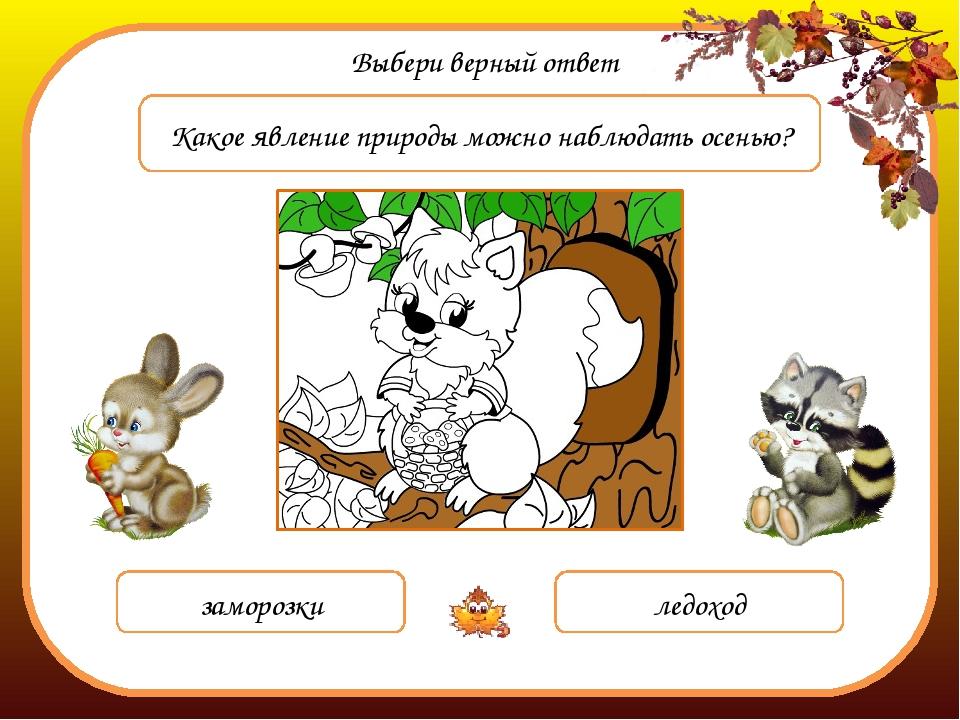 Выбери верный ответ Какое явление природы можно наблюдать осенью? заморозки л...