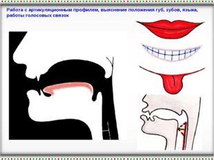 Работа с артикуляционным профилем, выяснение положения губ, зубов, языка, раб