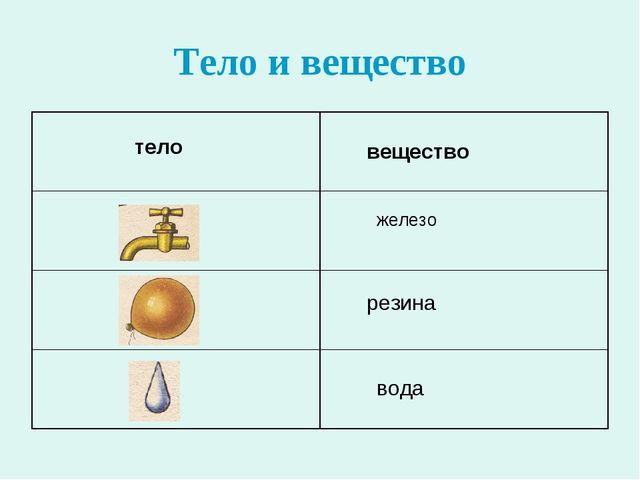 Тело и вещество тело вещество железо резина вода