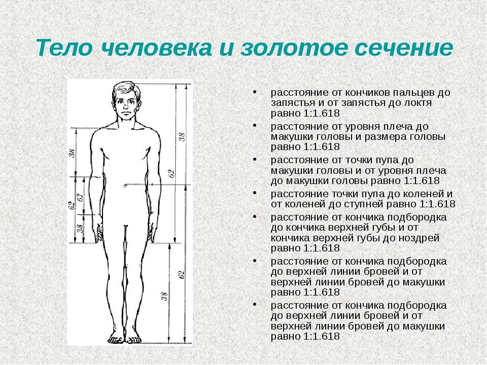 Разрезы на теле человека