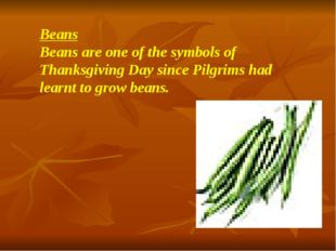 Beans Beans are one of the symbols of Thanksgiving Day since Pilgrims had lea