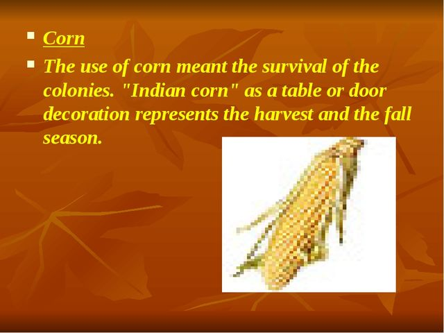 """Corn The use of corn meant the survival of the colonies. """"Indian corn"""" as a t..."""