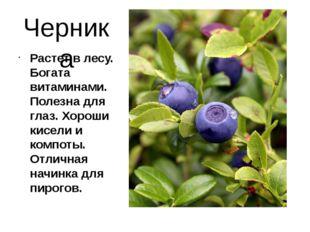 Черника Растет в лесу. Богата витаминами. Полезна для глаз. Хороши кисели и к