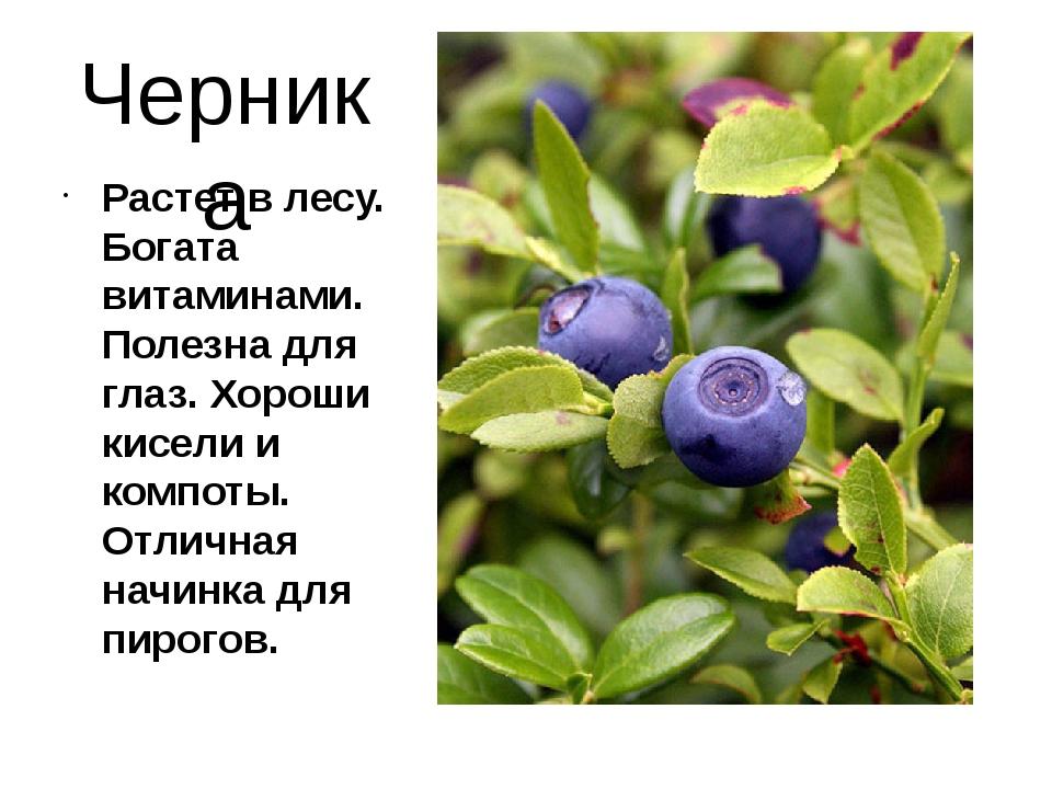 Черника Растет в лесу. Богата витаминами. Полезна для глаз. Хороши кисели и к...