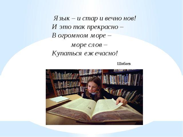 Язык – и стар и вечно нов! И это так прекрасно – В огромном море – море слов...