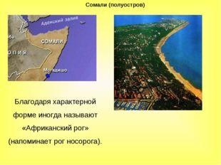 Сомали (полуостров) Благодаря характерной форме иногда называют «Африканский