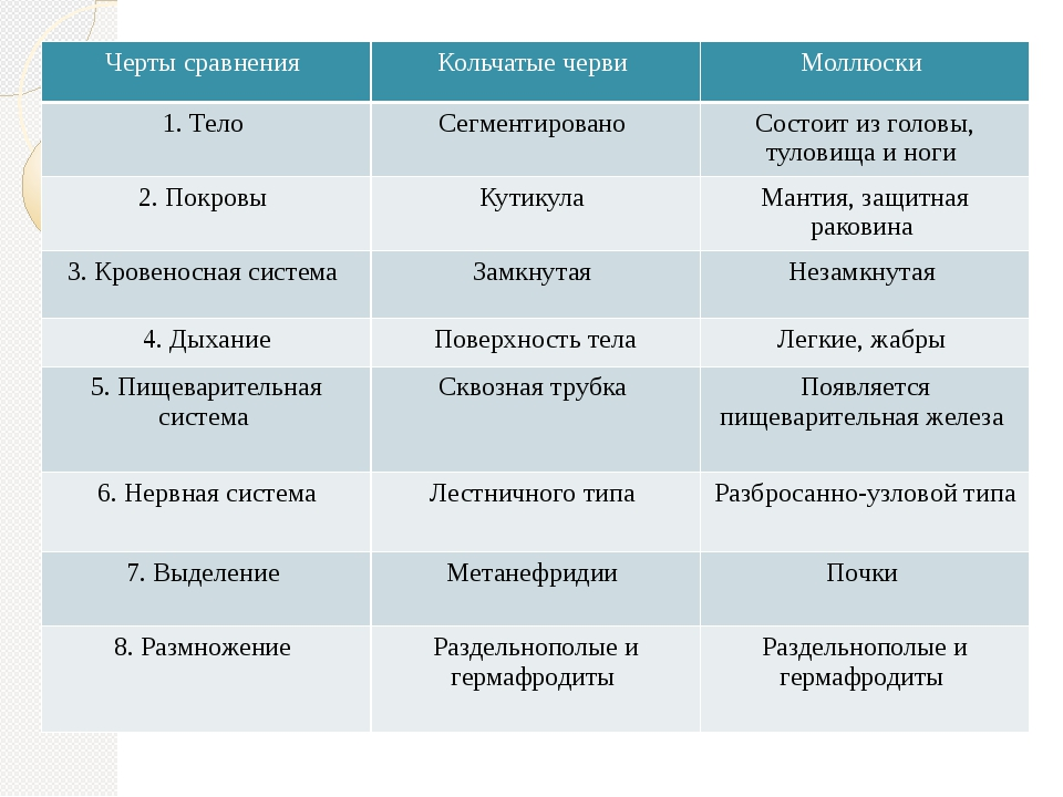 Черты сравнения Кольчатые черви Моллюски 1. Тело Сегментировано Состоит из г...
