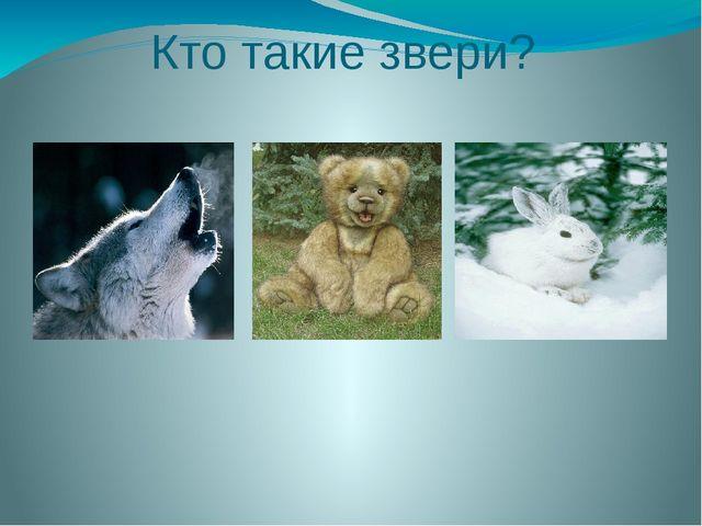 Кто такие звери?