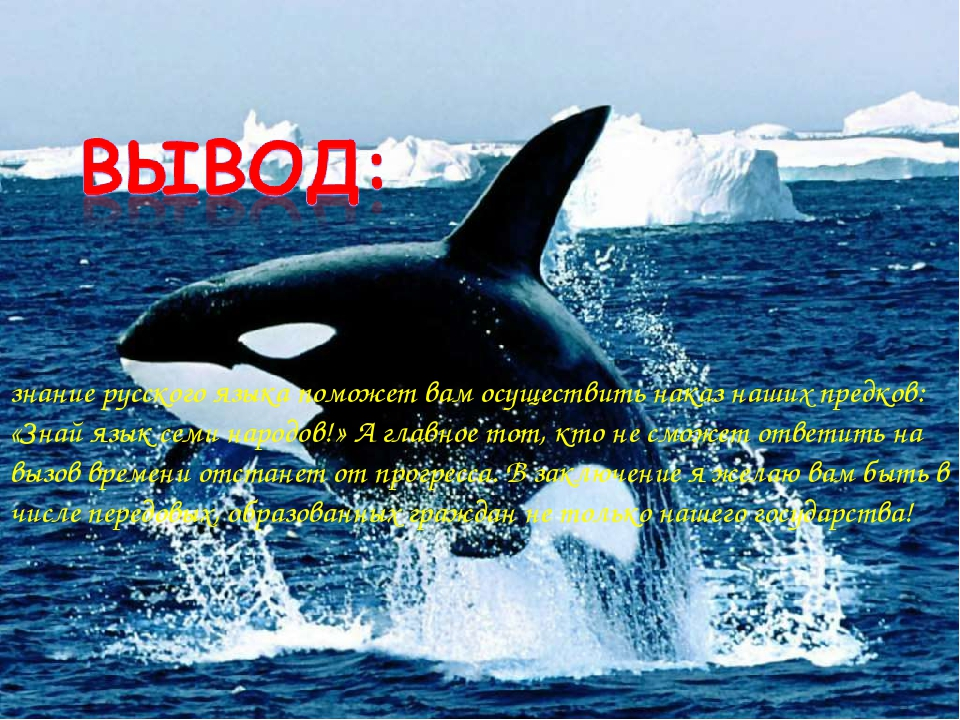 * знание русского языка поможет вам осуществить наказ наших предков: «Знай яз...