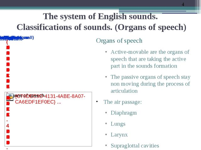 The system of English sounds. Classifications of sounds. (Organs of speech) O...
