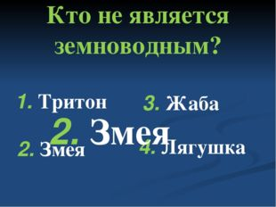 Кто не является земноводным? 1. Тритон 2. Змея 3. Жаба 4. Лягушка 2. Змея