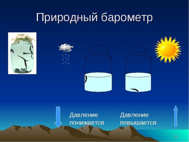 * Природный барометр Давление понижается Давление повышается