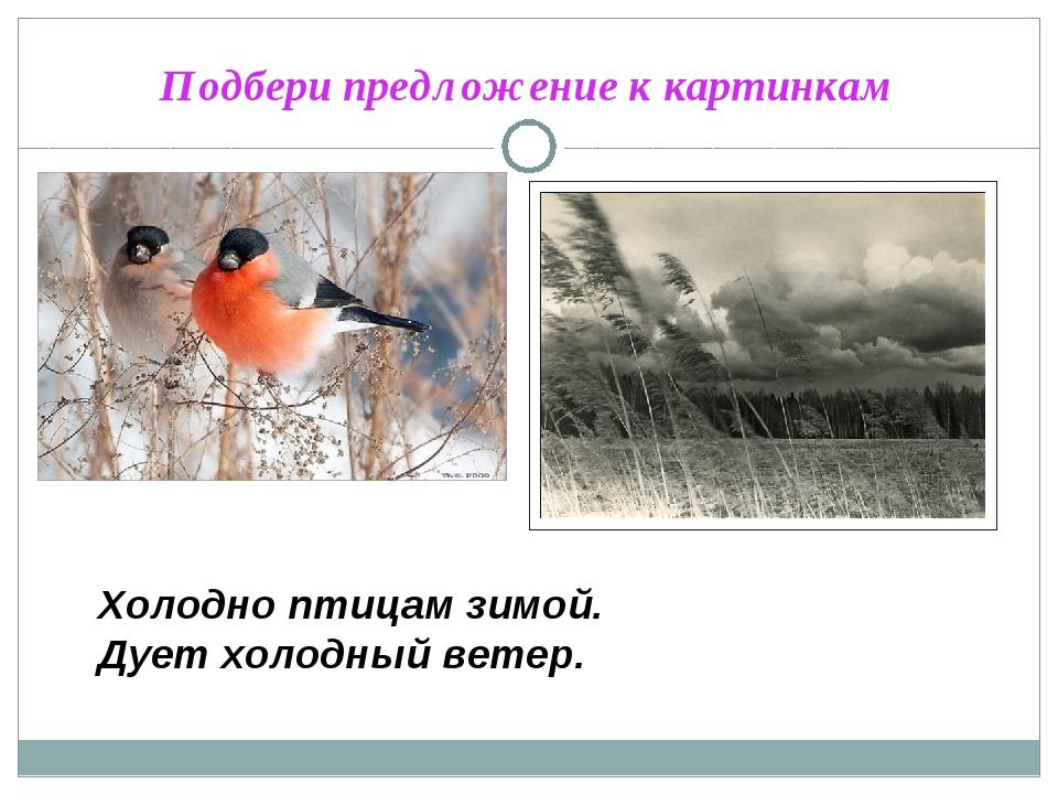 Подбери предложение к картинкам Холодно птицам зимой. Дует холодный ветер.