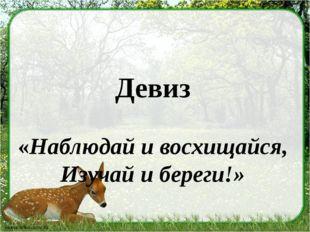 Девиз «Наблюдай и восхищайся, Изучай и береги!»