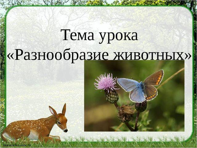 Тема урока «Разнообразие животных»