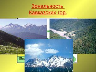 Зональность Кавказских гор.