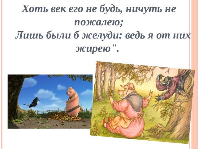 Хоть век его не будь, ничуть не пожалею; Лишь были б желуди: ведь я от них жи...